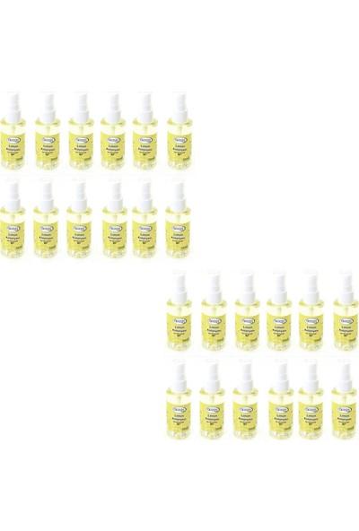 Özyeşil Limon Kolonyası 100 ml x 24