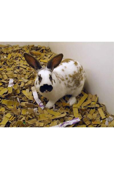 Empa Evcil Hayvan Yatağı - Yastıklama Dolgu Malzemesi