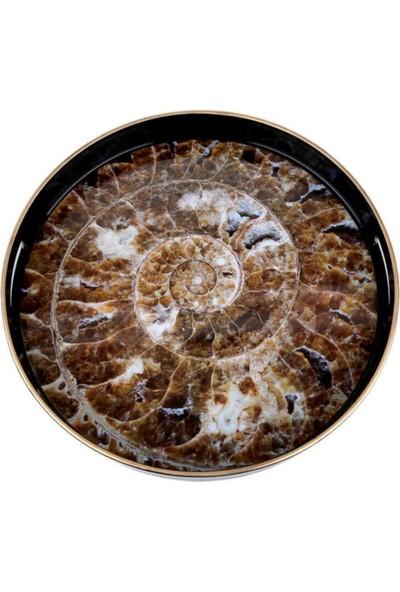 Lucky Art Deniz Kabuğu Servis Tepsisi 37 cm