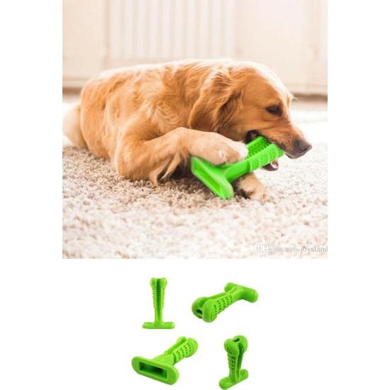 Rüzgar Köpek Diş Temizleyici ve Kaşıyıcı Sağlıklı Küçük Boy Oyuncak