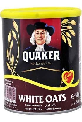 Quaker Yulaf Ezmesi 500 gr
