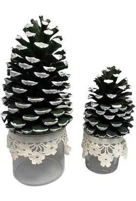 Lama Art Shop Dantelli Cam Saksıda Yılbaşı Kozalak Ağacı 2'li Ürün
