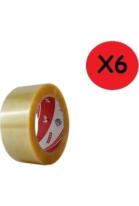 Vege Koli Bandı 45X100 Şeffaf (Aslan) 6'lı