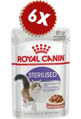 Royalcanin Gravy Kısırlaştırılmış Kedi Konserve 85 gr x 6 Adet