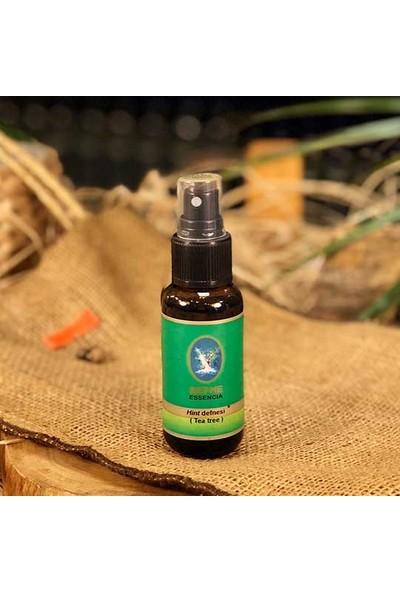 Defne Hint Defnesi/tea Tree Yağı 30 ml ( Organik - Fransa )
