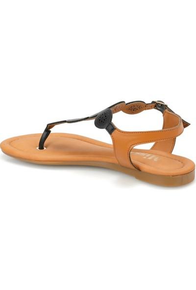 Miss F Ds19100 Siyah Kadın Sandalet