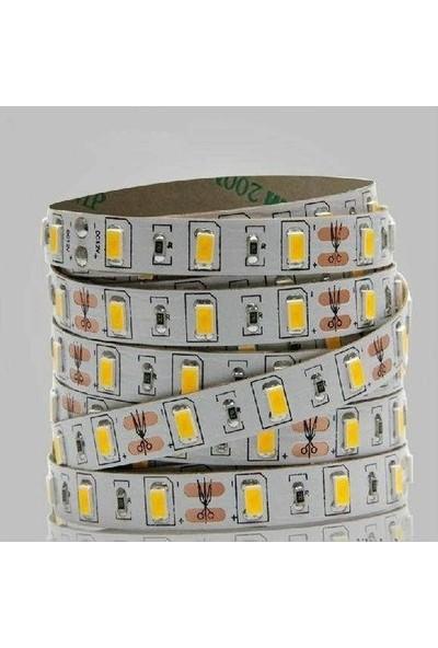 Ookay 5630 Şerit LED 8 Çipli Silikonsuz Günışığı 5 Metre