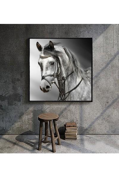 Mmo Design 80x80 cm Canvas Kanvas Tablo 35