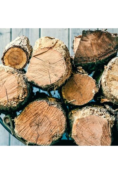 Çakmak Çıra - Şömine Odunu (10 KG)