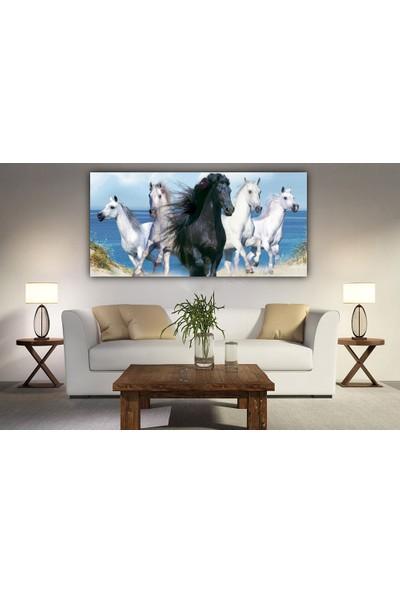 Syronix Siyah At ve Beyaz At Kanvas Tablo