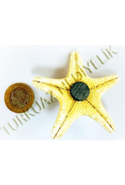 Turkuaz Hediyelik Deniz Yıldızı Magnet