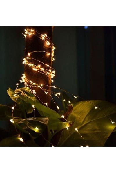 2 Metre Düğme Akülü Bakır Telli Peri LED Işık Günışığı