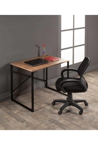 BLT EV GERECLERİ Blt Metal Çalışma Masası Bilgisayar ve Laptop Masası Çalışma Ofis Masası