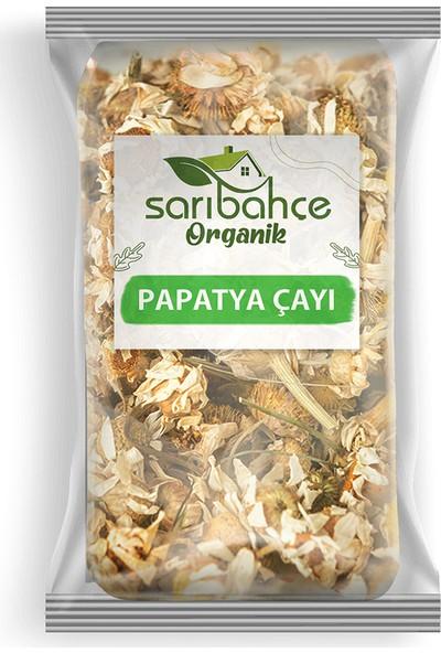 Sarıbahçe Papatya Çayı 1000 gr