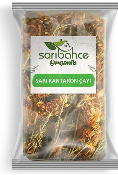 Sarıbahçe Sarı Kantaron Çayı 100 gr