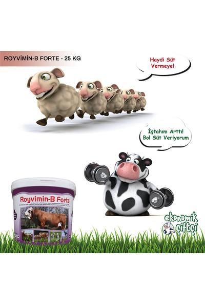 Royal İlaç Royal Royvimin B Forte Kova- 25 kg Maya + Vitamin + Mineral
