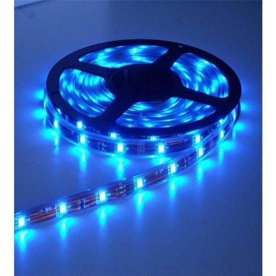 Ookay 5630 Şerit LED 8 Çipli Silikonsuz Mavi 5 Metre