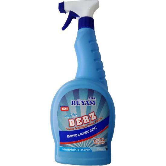 Rüyam Mavi Su Derz Fayans Temizleyici 750 ml