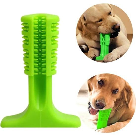 Trend Yaşam Köpek Diş Temizleyici ve Kaşıyıcı Sağlıklı Küçük Boy Oyuncak