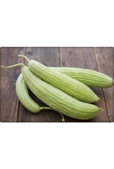 Arzuman Acur Tohumu 10 gr Beyaz-Uzun Tip