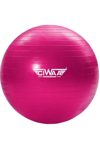 Ciwaa CWA-2045 Pilates Topu 65 cm Pembe