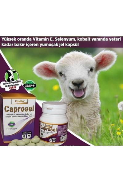 Royal İlaç Caprosel 50 Kapsül Yüksek Oranda Vitamin E, Selenyum, Kobalt