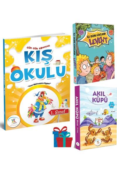 Gün Gün Eğlenceli Kış Okulu 1. Sınıf-Akıl Küpü Hikaye Seti (10 Kitap) - Ilk Okuma Kitaplarım Levent 1. Sınıf Hikaye Seti