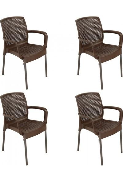 Romanoset Plastik Romanoset Defne Metal Ayaklı Rattan Kollu Sandalye 4 Lü Set
