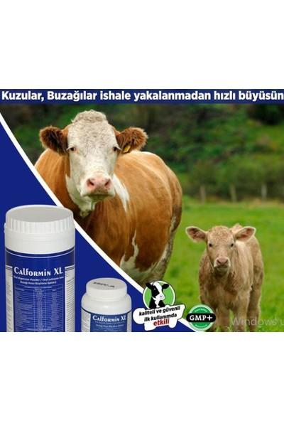 Royal İlaç Calformin Xl 250 gr Hayvan Yem Katkısı