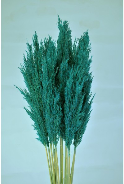 Yapay Çiçekçiniz Şoklanmış Yeşil Renk 16'lı Pampas Otu 100CM