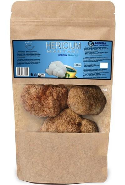 Agroma Hericium Aslan Yelesi Mantarı Kuru 100 gr