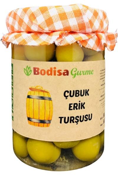 Bodisa Gurme Çubuk Erik Turşusu 1 kg