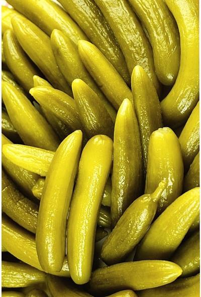Bodisa Gurme Çubuk Salatalık Turşusu 1 kg