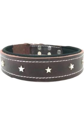 Pacopet Ayarlanabilir Yıldız Desenli Iç Kısmı Petli Deri Köpek Boyun Tasması - Koyu Kahve 3X60 cm