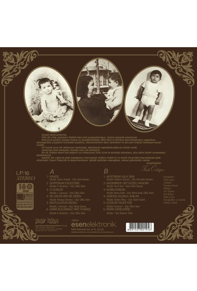 Ferdi Özbeğen - Seviyorum Delicesine - Plak