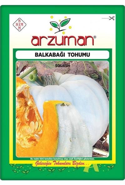 Arzuman Balkabağı Tohumu Arıcan 97 (10 gr) En Iyi Çeşit