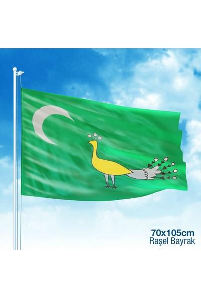 Asilmeydan Gazneliler Gazne Devleti Bayrağı 17 Eski Türk Devleti Bayrağı 70 x 105 cm