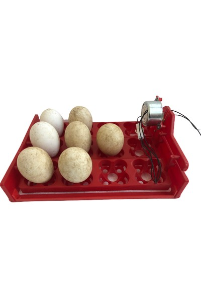 Efe Kuluçka Makineleri 48 Bıldırcın Yumurtası Kuluçka Makinesi