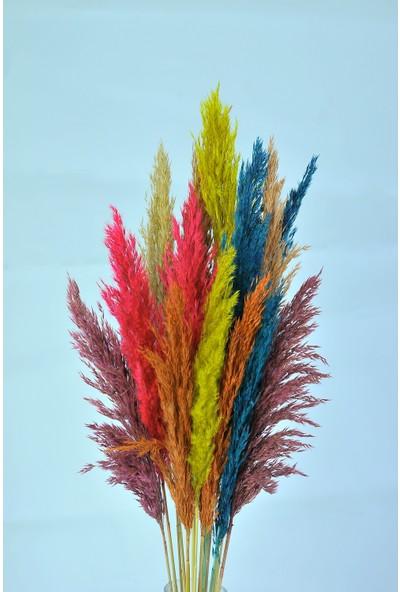 Yapay Çiçekçiniz Şoklanmış Karışık Renk 16'lı Pampas Otu 100cm