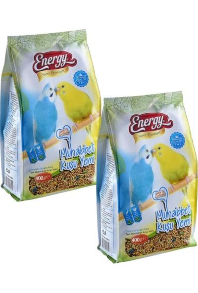 Energy Super Premium Muhabbet Kuşu YEMI-400 Gram-2 Adet