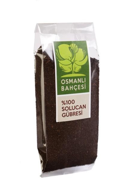 Tatlı Kıl Biber Tohumu + Organik Solucan Gübresi Paketi