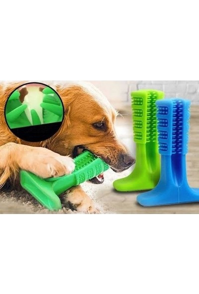 Dream Plus Köpek Diş Kaşıma Fırçası Isırma Aparatı Küçük Boy