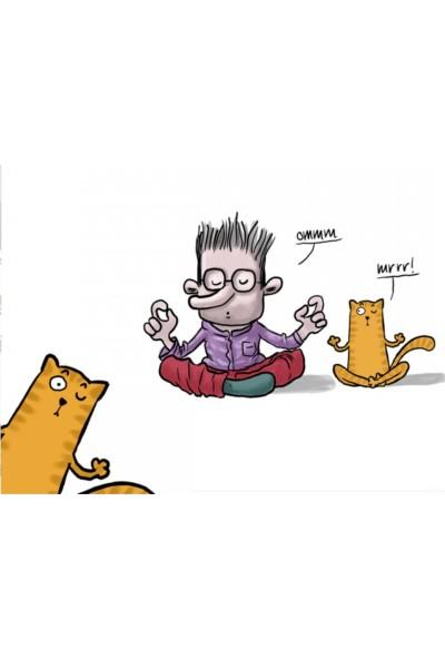 Paklon Cat Yoga Spiralli Defter A5 100 Yaprak Çizgisiz
