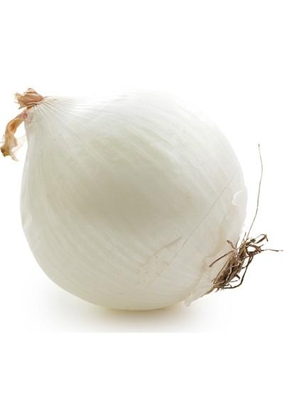 Meyve Ağacım Beyaz Soğan - 5 kg