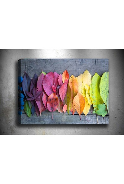 Syronix Renkli Yapraklar Kanvas Tablo