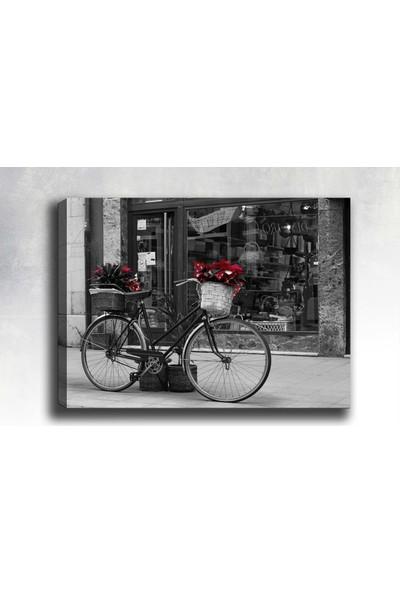 Syronix Siyah Beyaz Bisiklet kanvas tablo