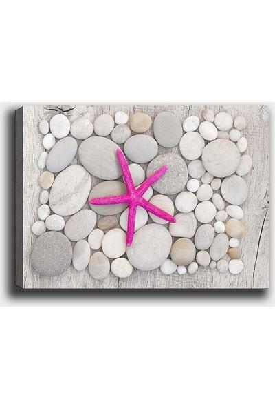 Syronix Deniz Yıldızı ve Taşlar Kanvas Tablo