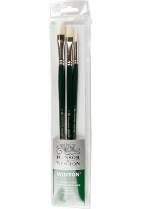 Winsor & Newton : Winton : Uzun Sap Fırça Seti : 3' Lü