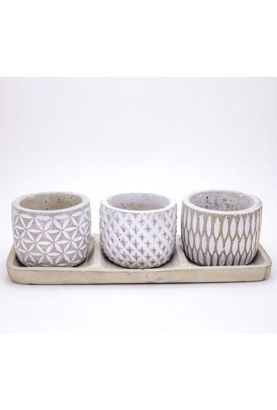 MF Botanik Tabaklı Trio Kaktüs Sukulent Saksısı Dekoratif Ofis Ev Saksısı Beyaz Renk Set