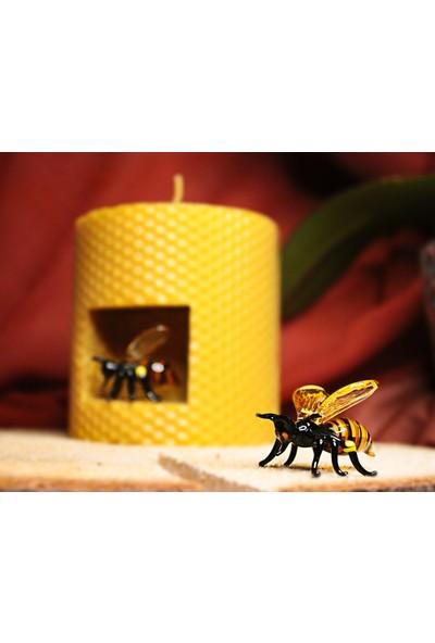 Adamodart Arı Cam Figürlü Tasarım Petek Mum